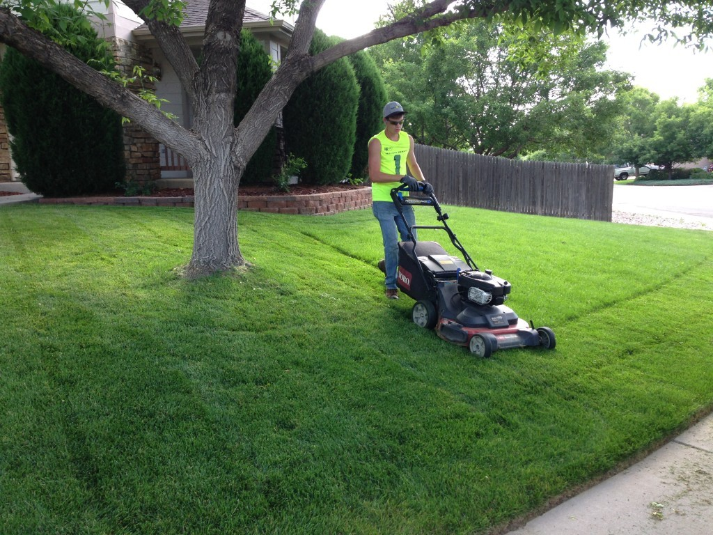 Lawn Service-Fort Worth TX Landscape Designs & Outdoor Living Areas-We offer Landscape Design, Outdoor Patios & Pergolas, Outdoor Living Spaces, Stonescapes, Residential & Commercial Landscaping, Irrigation Installation & Repairs, Drainage Systems, Landscape Lighting, Outdoor Living Spaces, Tree Service, Lawn Service, and more.